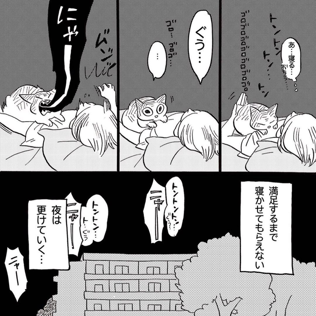 hasegawa_roku_69107019_156035088835356_2294874727604572682_n