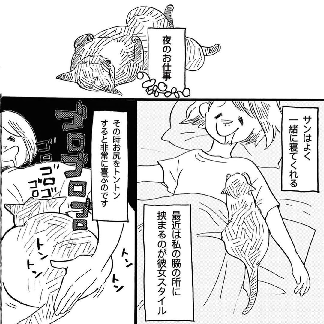 hasegawa_roku_67811126_654685508358182_8902939288447530056_n