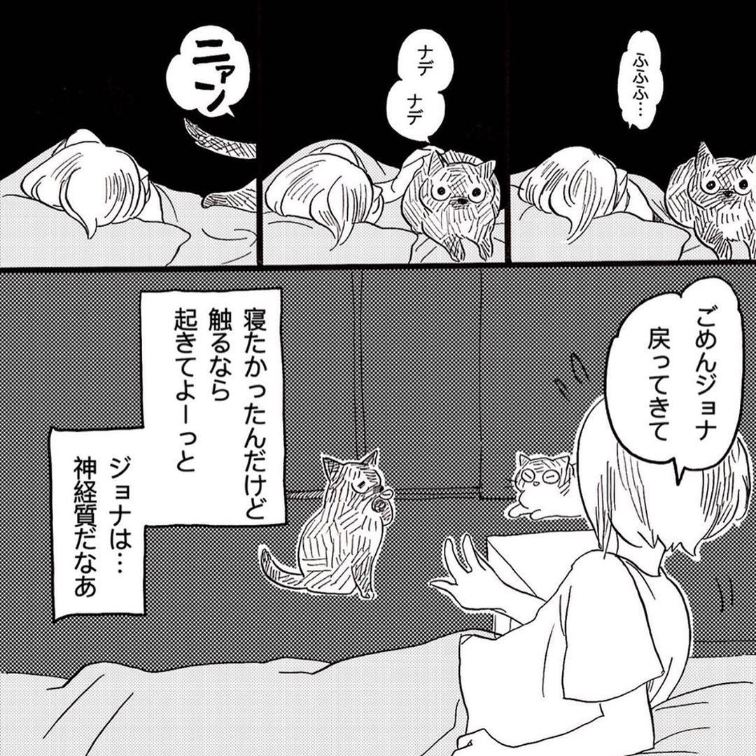 hasegawa_roku_67800955_610397069494171_6944624986584094974_n