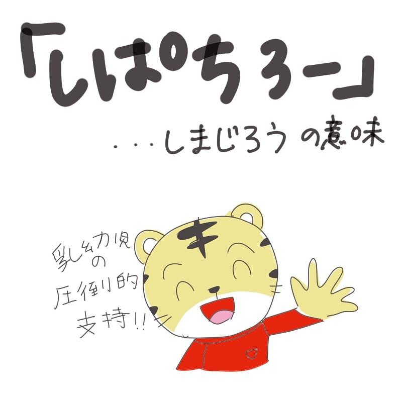 shirota_chiriko_50605898_813019619033808_5498961073094557835_n