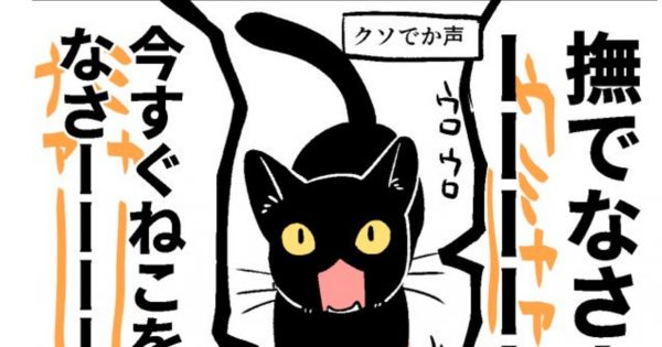 【4コマ】ネコのかわいさをギュッッッと凝縮した漫画