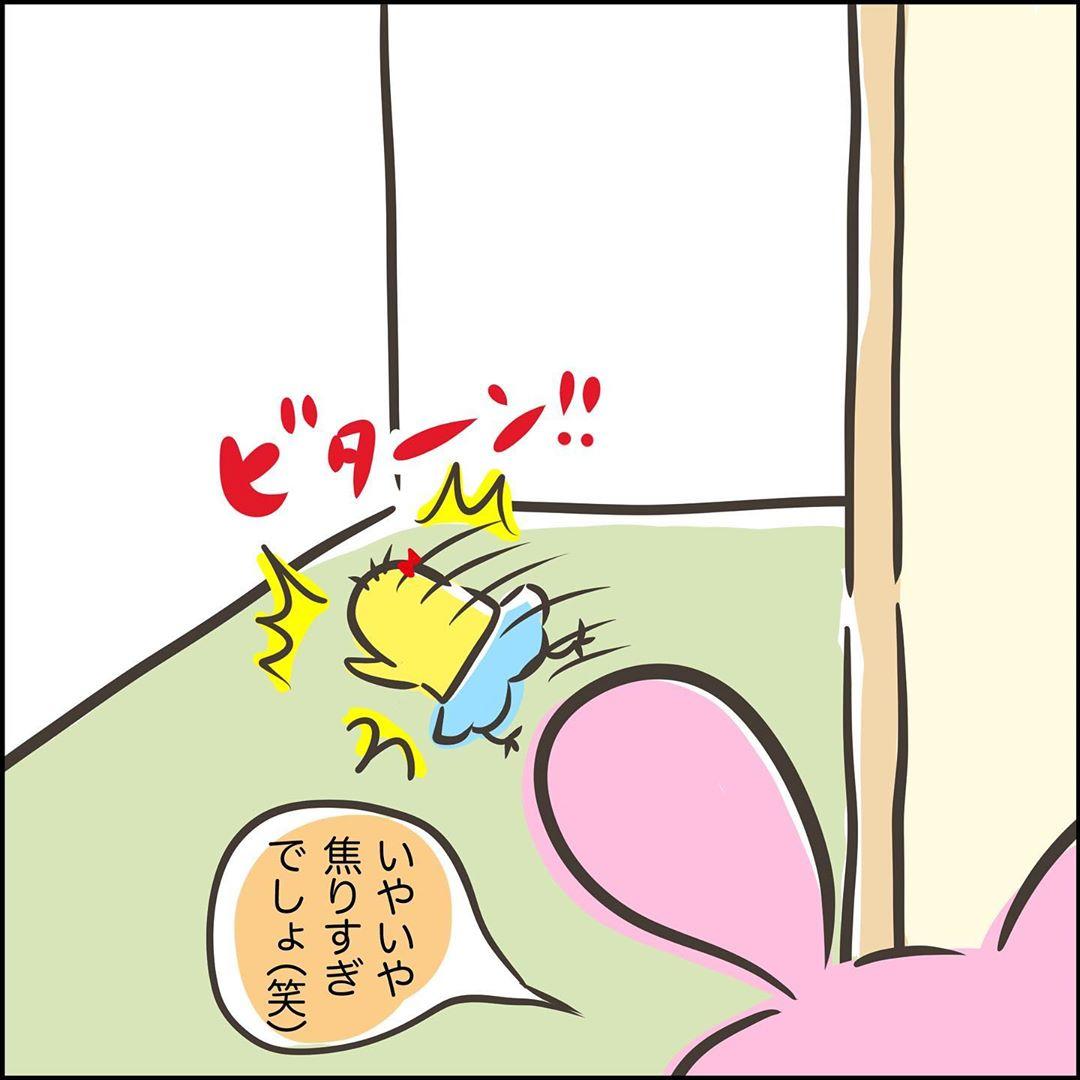 shiii_yuruguda_70811524_395499471144398_2310627876083434511_n