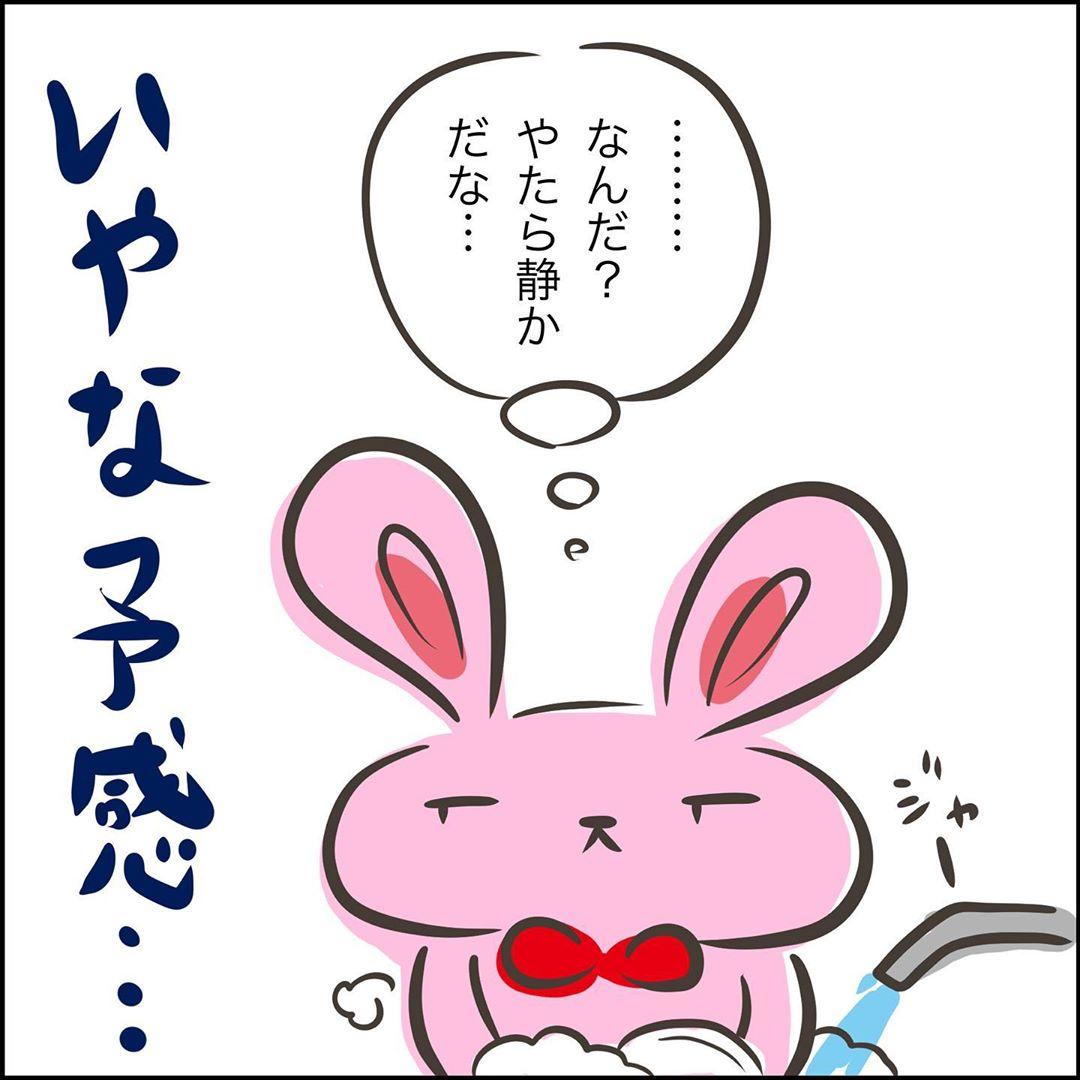 shiii_yuruguda_71343618_710429702793876_7800852023384413760_n