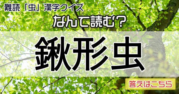 写真はないから安心して!難読「虫」漢字クイズ〜🐞🐝