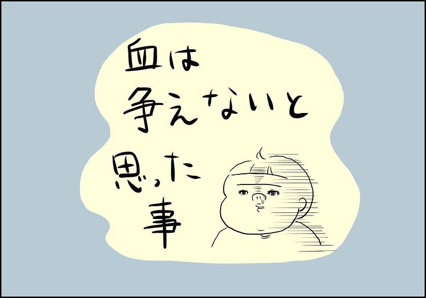 shiroko_u_72472587_1407261719438239_1940609924246979864_n