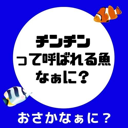 kawayanfishing_73220036_190220595349785_5671276895957448583_n
