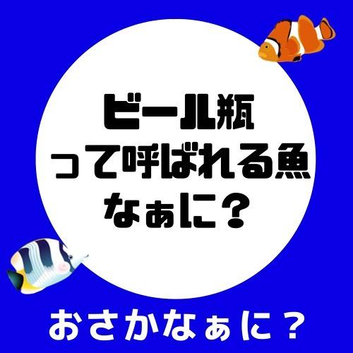 kawayanfishing_72592046_422125218491751_1458591555197484273_n