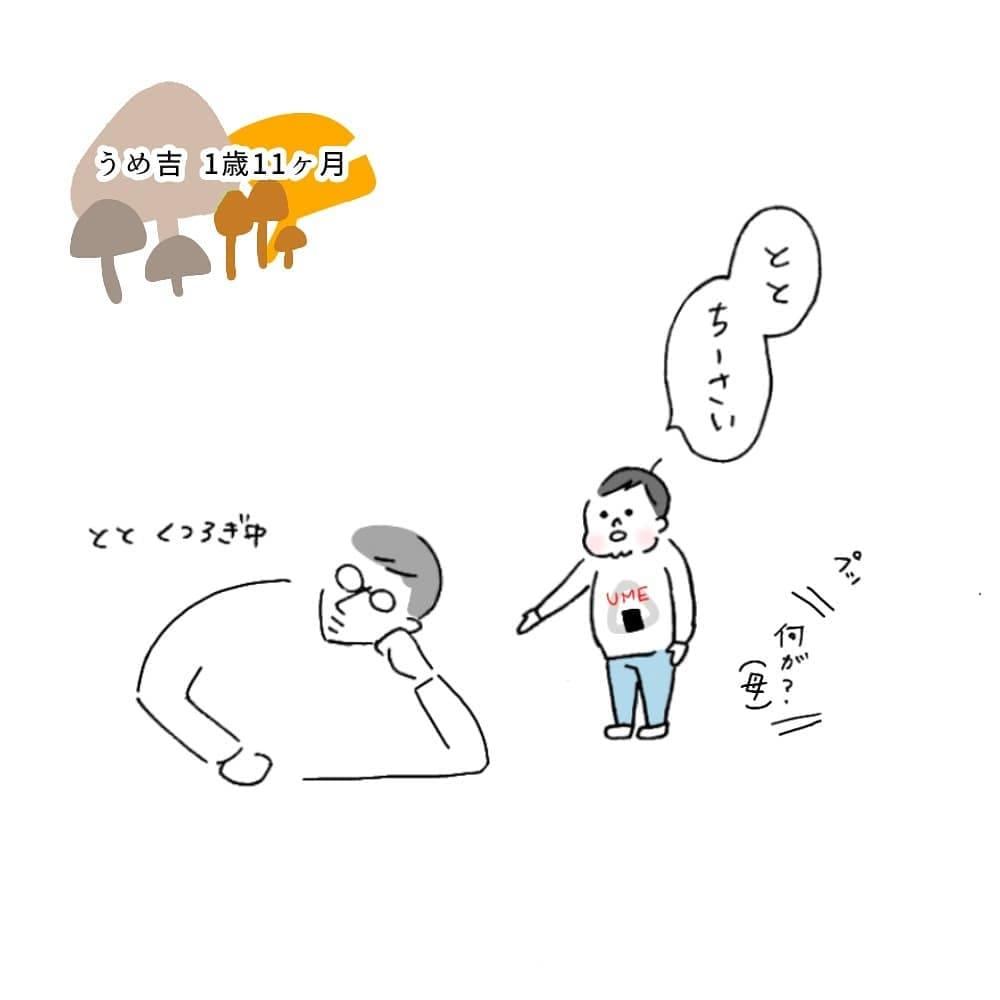 uuu_umekichi_72482359_576208046457064_551050734922938848_n