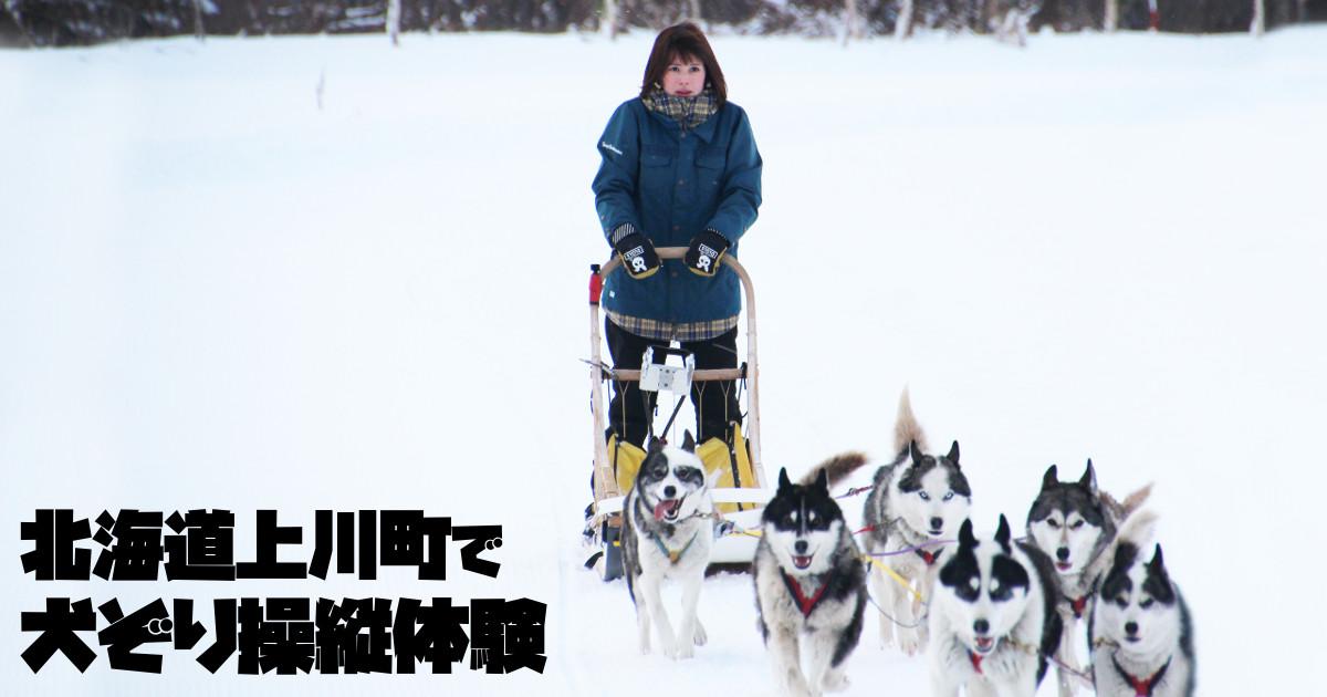 銀世界を犬たちと駆ける!北海道で犬ぞり体験してきた!