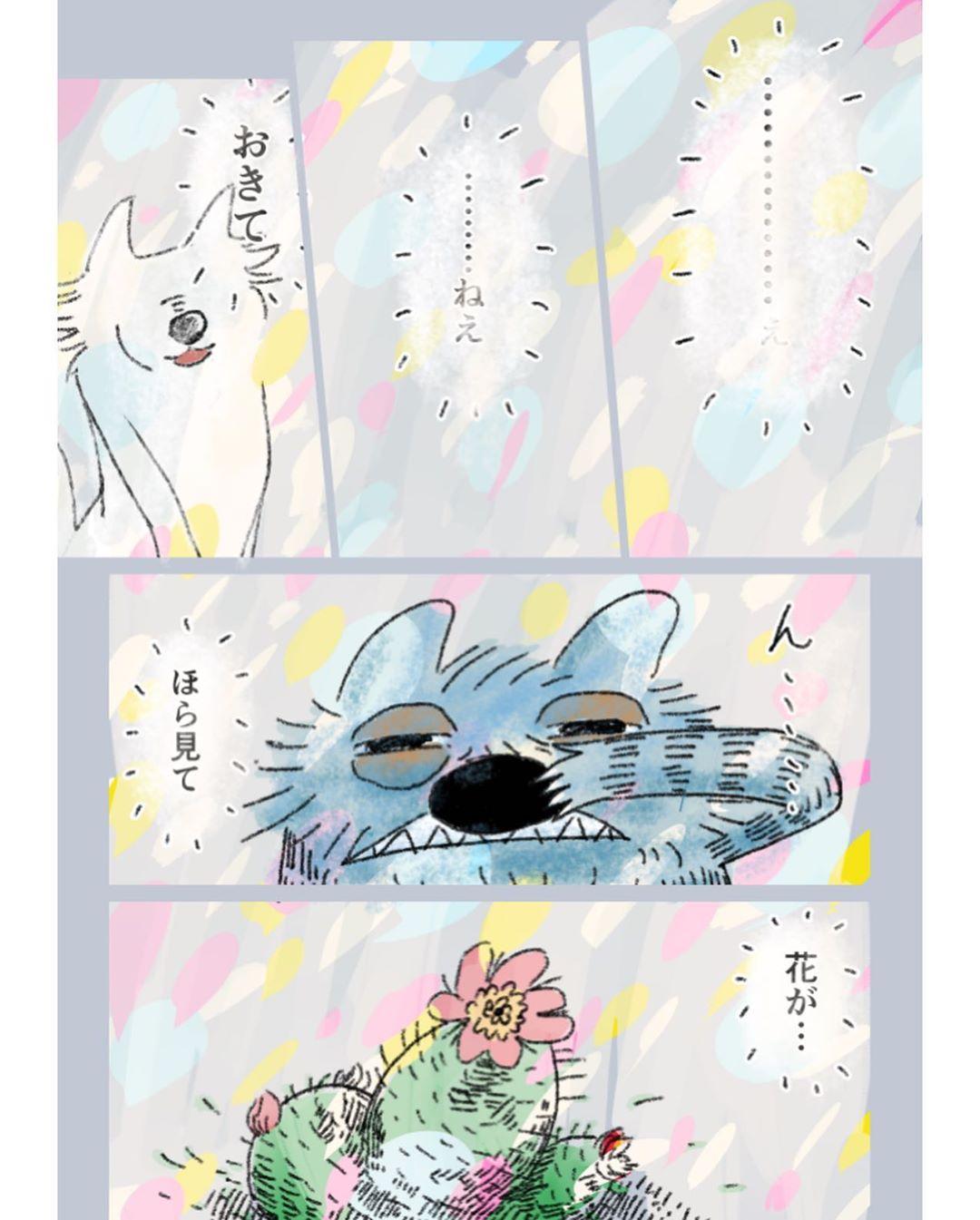 shitara_ryo_tacorice88_75379817_168445837835536_7430593816630498579_n