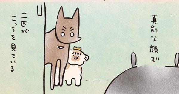 犬との「ほっこり生活」にひたすら笑顔になりました☺️