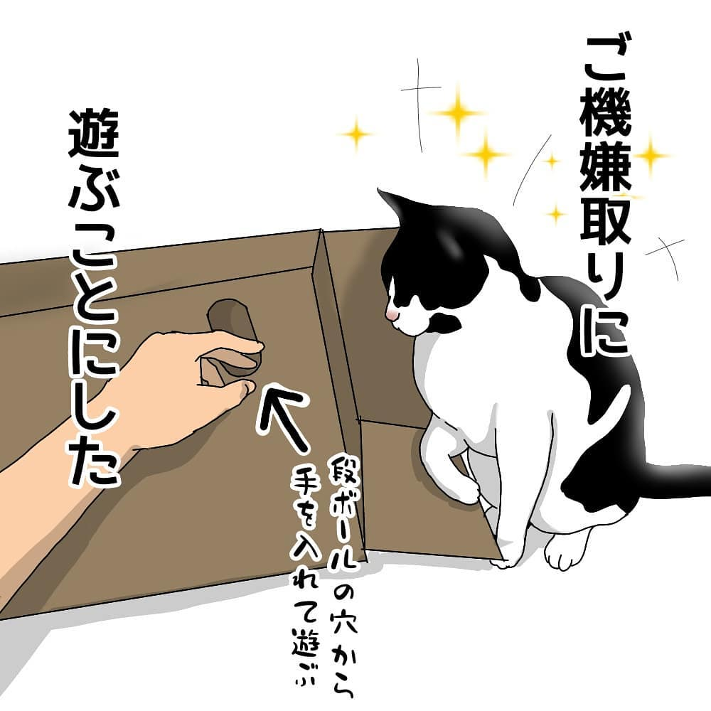yoshie_nekomaru_47692603_2238700253053634_3735361056223002624_n