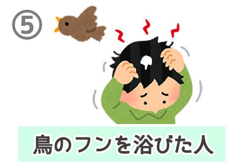 春の七草 性格 心理テスト 鳥のフン