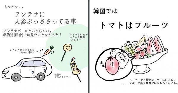 韓国に住む日本人が描く「韓国あるある」🇰🇷✨