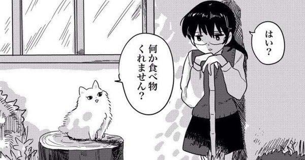 女子高生、ネコに自分の「まさかの正体」を教えられる