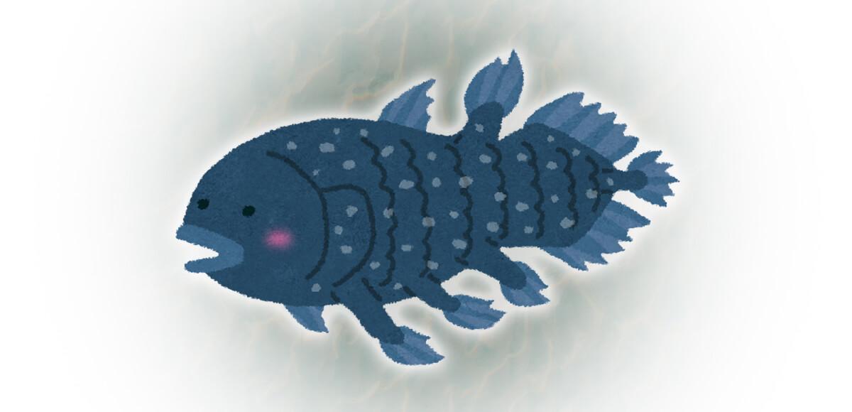 シーラカンス 深海魚 心理テスト