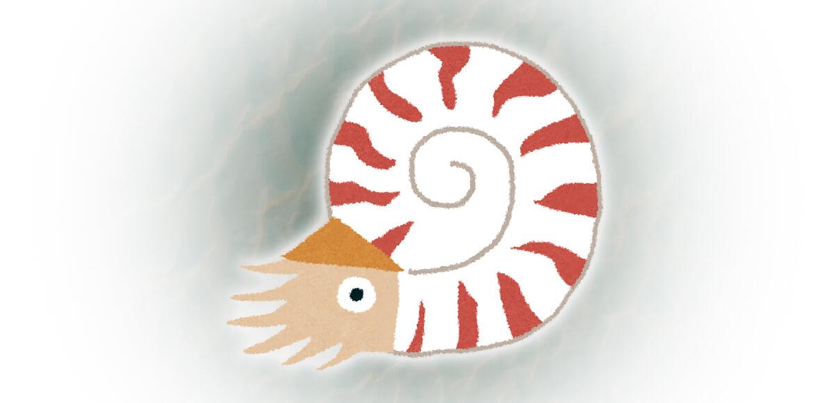 オウムガイ 深海魚 心理テスト