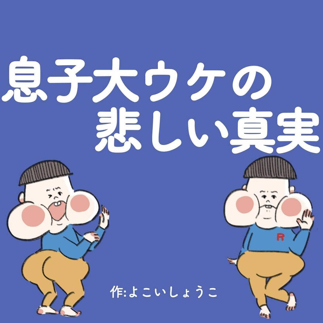 shokoyokoi.rara_72488111_528203584701092_1488174622357774152_n