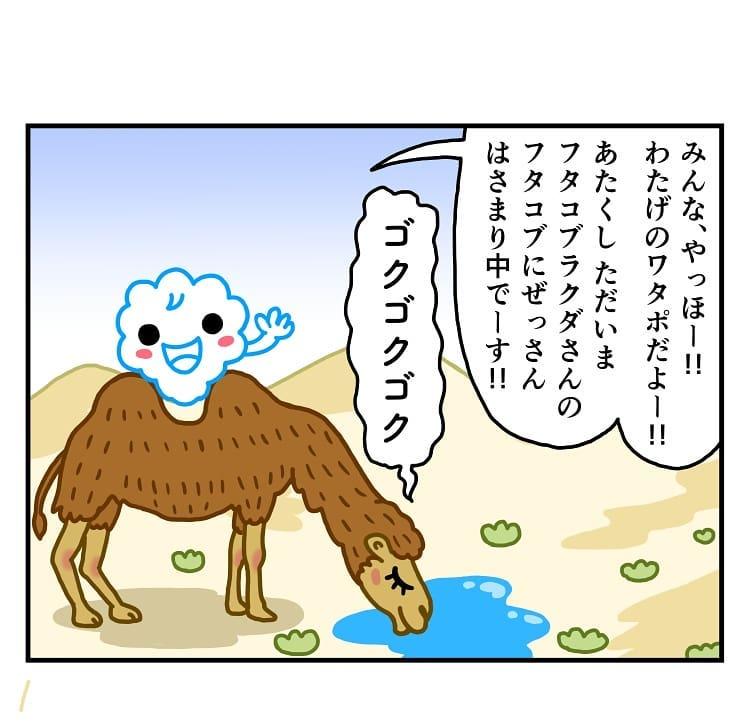 makoto.yamanobe_67848675_100543244655620_1335236408907613563_n