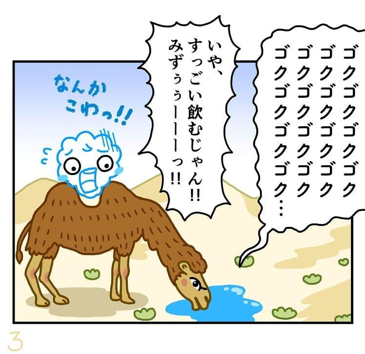 makoto.yamanobe_67934535_378659756144250_3198272335527271192_n