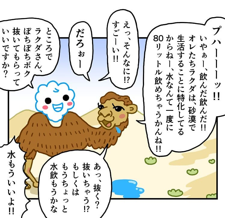makoto.yamanobe_67694109_155451962237422_8739007924332116788_n