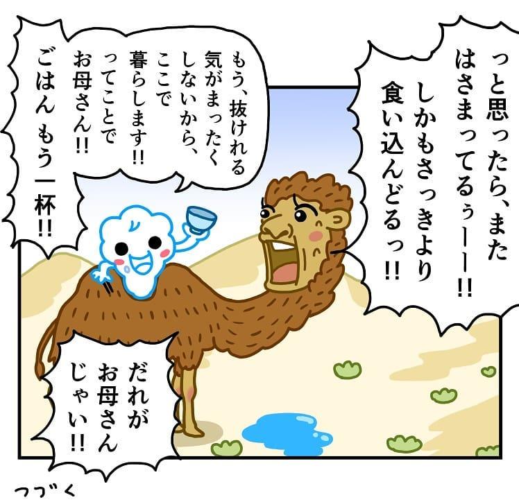 makoto.yamanobe_69404594_101535944519441_4499938859092694089_n