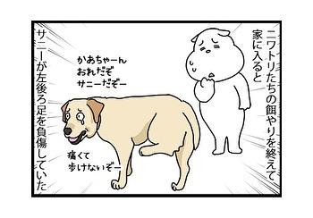 hitsujinokuni.yu_79389885_1430259607122754_8476067001781621451_n