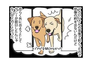 hitsujinokuni.yu_82366553_195078034868399_2470165853211978180_n
