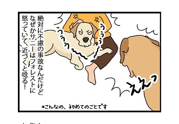 hitsujinokuni.yu_79438255_167943237637960_3557969524638060675_n