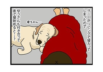hitsujinokuni.yu_79831660_154422199185236_2930092178199287795_n
