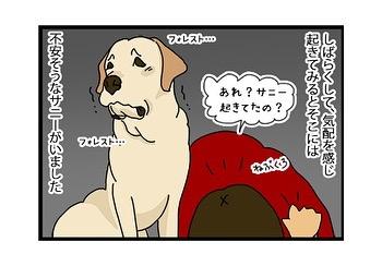 hitsujinokuni.yu_80857687_2617419688481497_441175702751026597_n