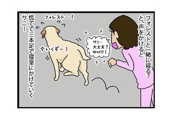 hitsujinokuni.yu_81643305_515102362442275_4768465713495460638_n