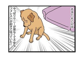 hitsujinokuni.yu_81382512_832861670491795_4702335890146225132_n