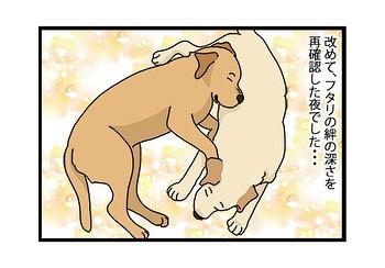 hitsujinokuni.yu_79743055_587660318751880_183107916613409018_n