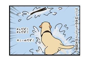 hitsujinokuni.yu_80805621_2208512999449703_573777893375380205_n