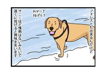 hitsujinokuni.yu_75458075_1728584263943966_2757540962607969379_n