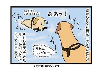 hitsujinokuni.yu_79600286_139552517476461_2776273587362586613_n