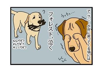 hitsujinokuni.yu_81035215_166173227815831_1892730735591294622_n