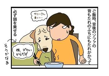 hitsujinokuni.yu_81097057_835184666922522_8421507604170546425_n