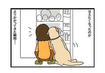 hitsujinokuni.yu_75319186_428198664753536_3465480220058993356_n