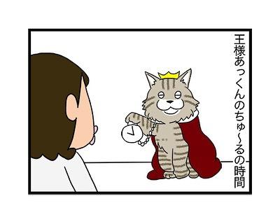 hitsujinokuni.yu_70580750_158345205240639_8771794986076912040_n