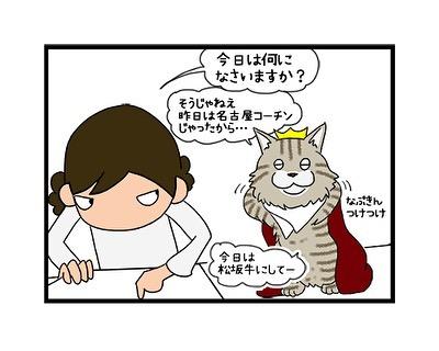 hitsujinokuni.yu_69900863_239092680377237_97138407639710860_n