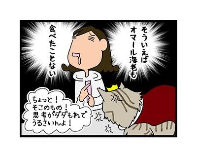 hitsujinokuni.yu_71334661_503946407056769_2352915131048615052_n