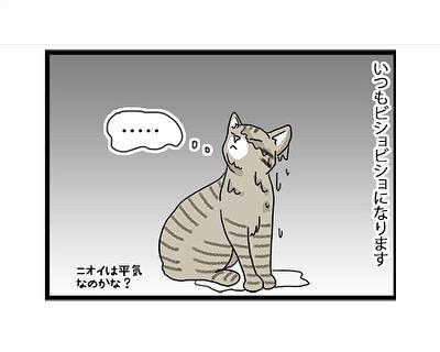 hitsujinokuni.yu_65301860_902547536804172_7609075333275869387_n