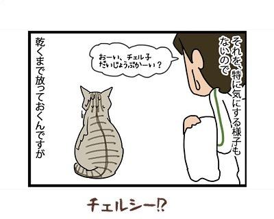 hitsujinokuni.yu_64821547_212795583018352_3890131997141850584_n