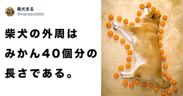 pmarutaro2000