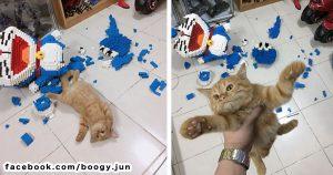 ごめん笑う!同類のはずの「ドラえもん」をぶっ壊したネコwww