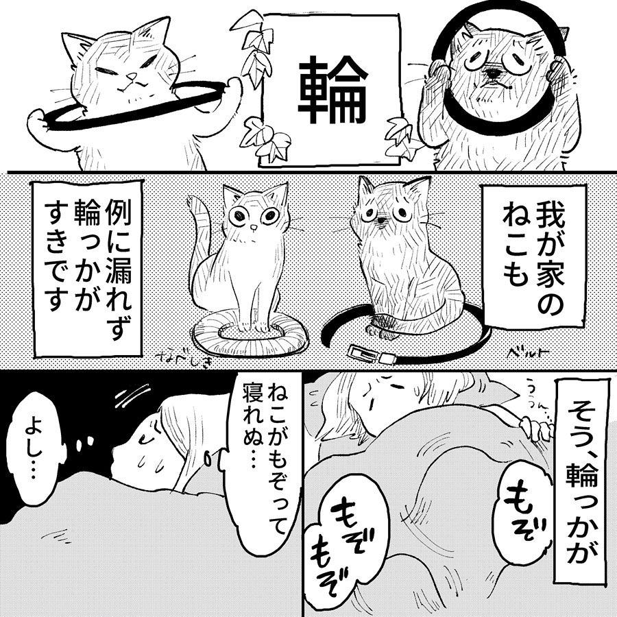 hasegawa_roku_81842014_606794383463710_315507389582920950_n