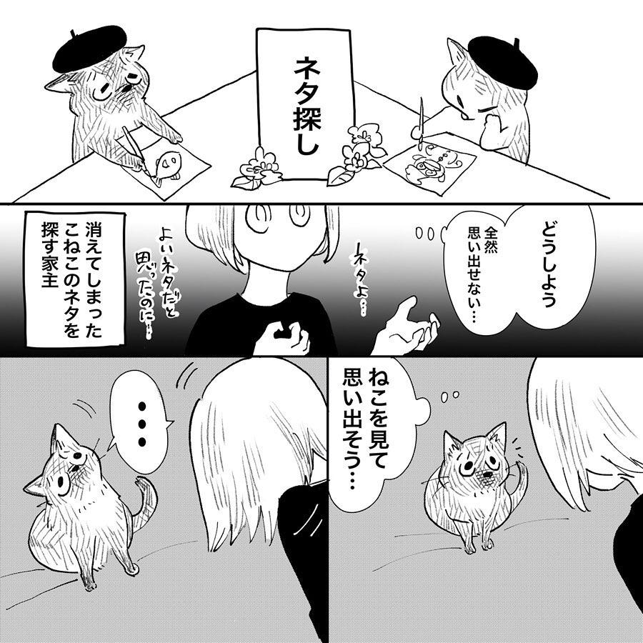 hasegawa_roku_74879303_555875545144076_2424093172462105918_n