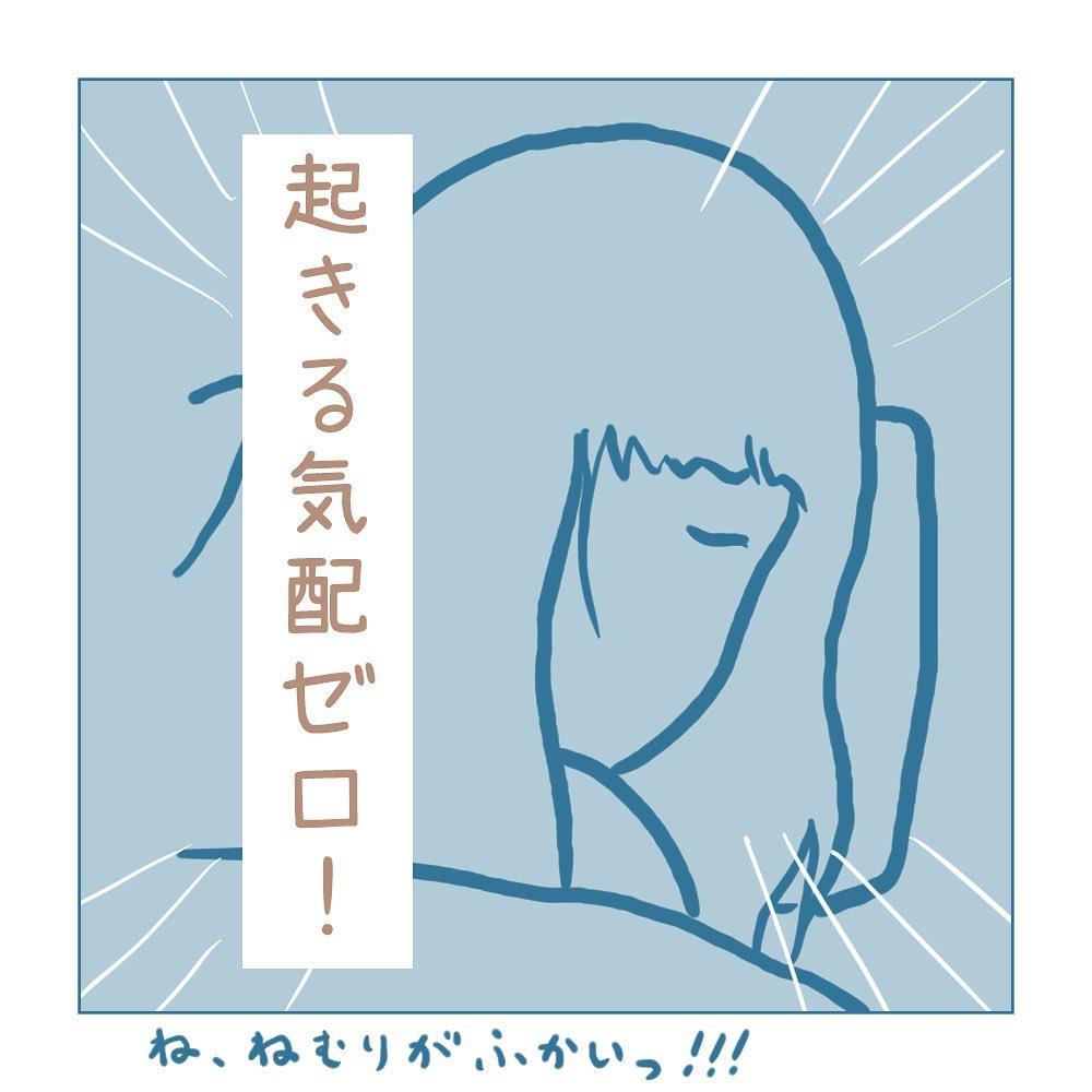 haruki_komugi_79690938_288296252127830_6049061794866503527_n